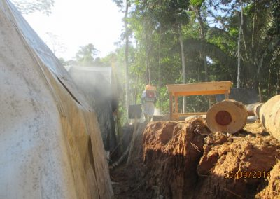 Fumigación de campamento - Obra. Construcción y ejecución de las obras civiles en la planta electrica, distrito de punchana, maynas, loreto(3)